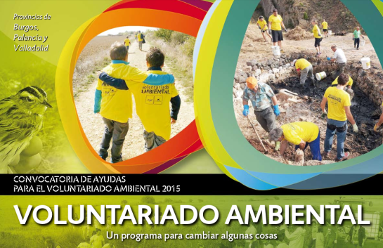 cartel-voluntariado